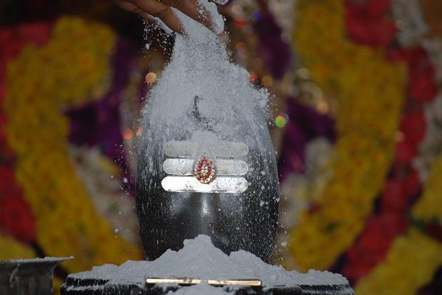 offer bhibhuti togod shiva thinatamil -