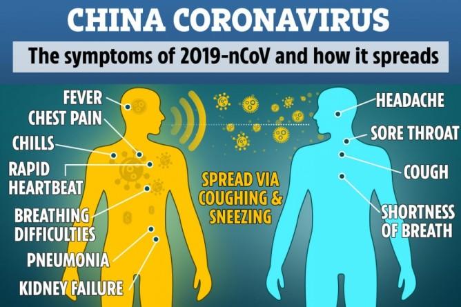 virus-fever-thinatamil
