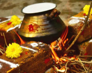 tamil-new-year-2020-pongal