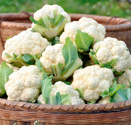 fresh-cauliflower-thinatamil