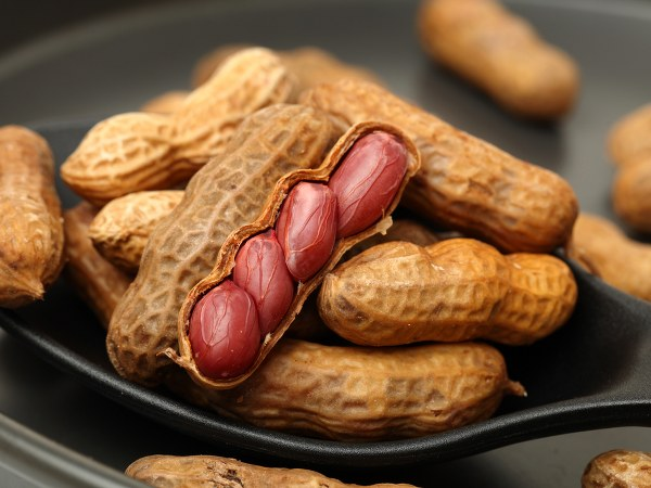 nuts-thinatamil