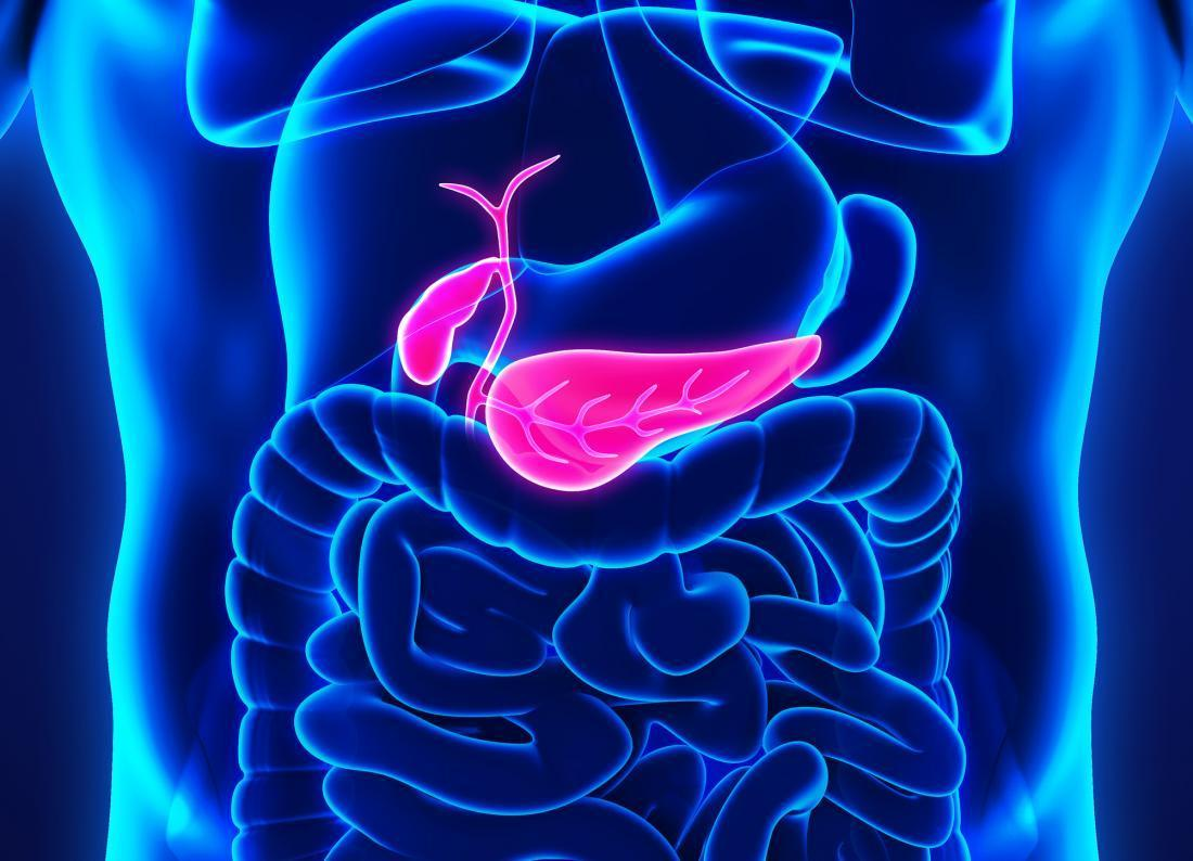 pancreatic-cancer-affects-the-pancreas-thinatamil
