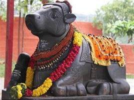Nanthi