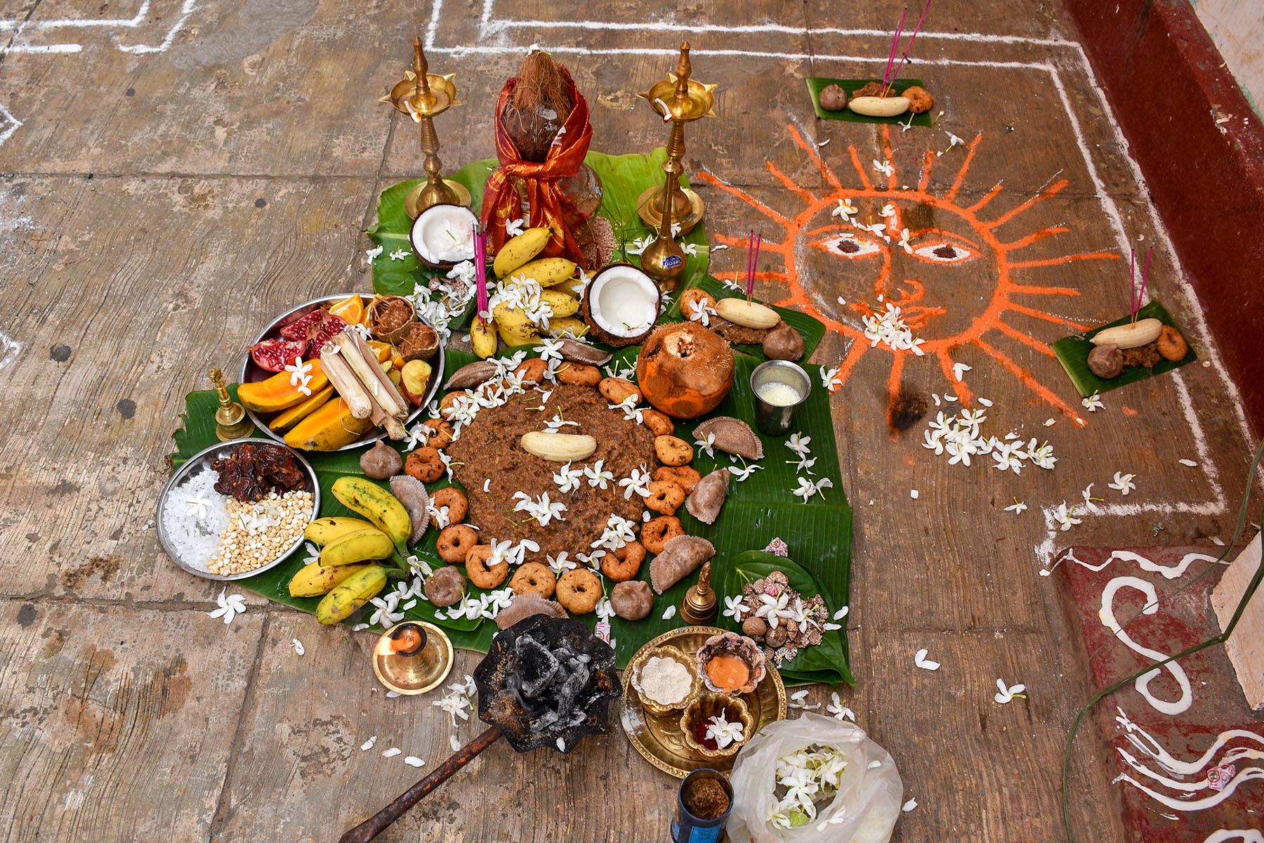 thai-pongal-celebration-thinatamil